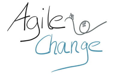 Agiler Change – Same, same, but different